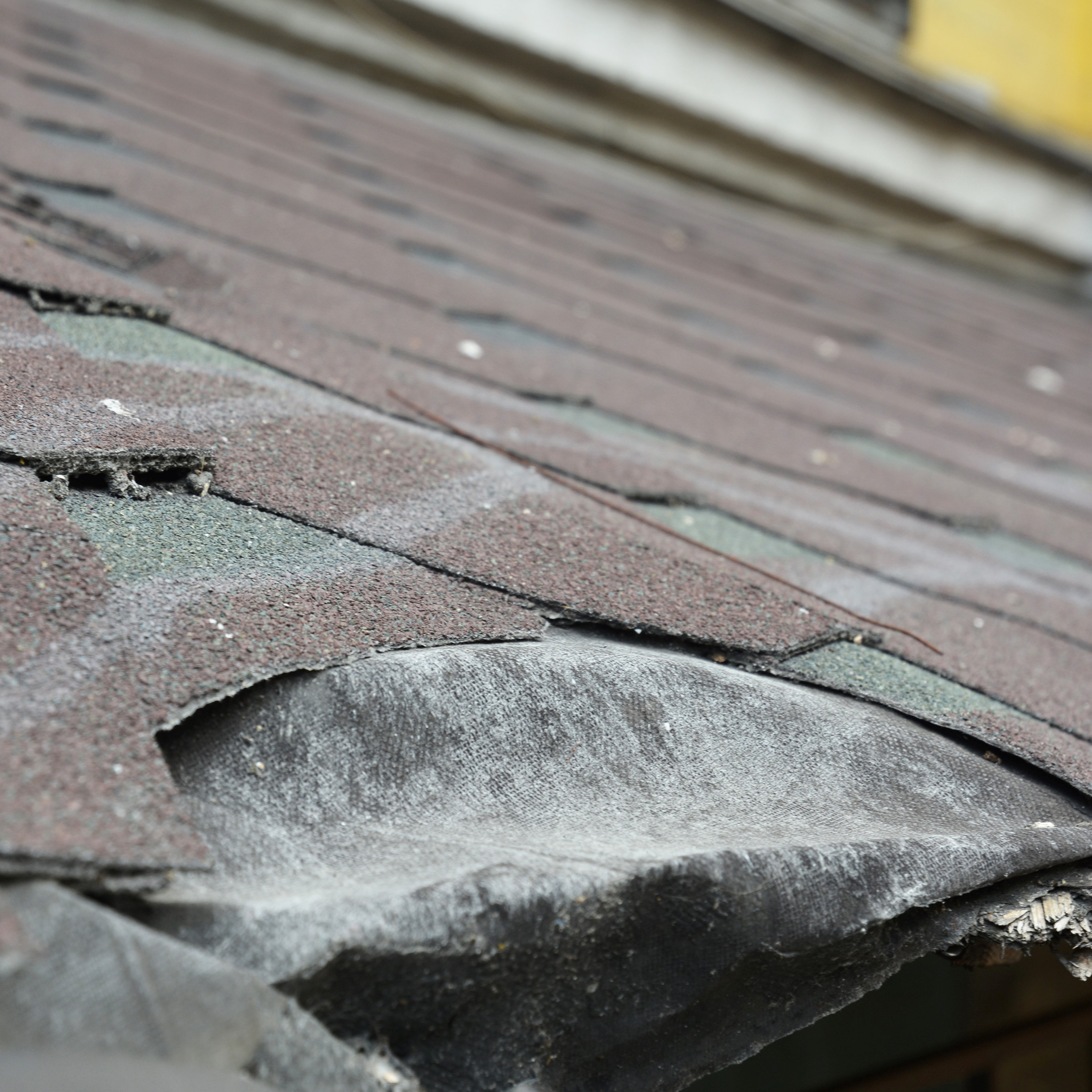 A home's roof that is in need of an emergency repair.